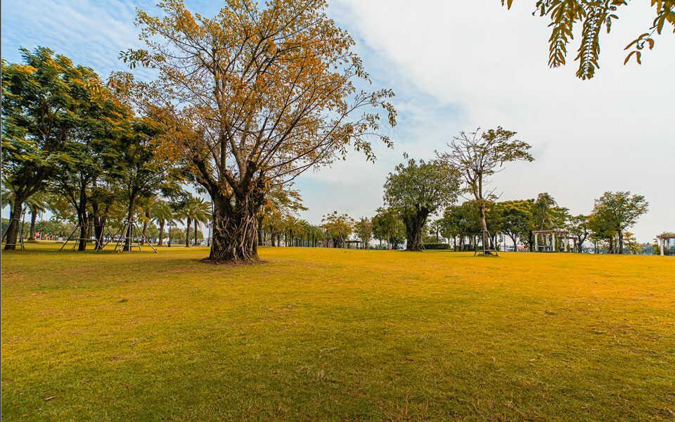 Công viên tại căn hộ cho thuê Vinhomes Tân Cảng