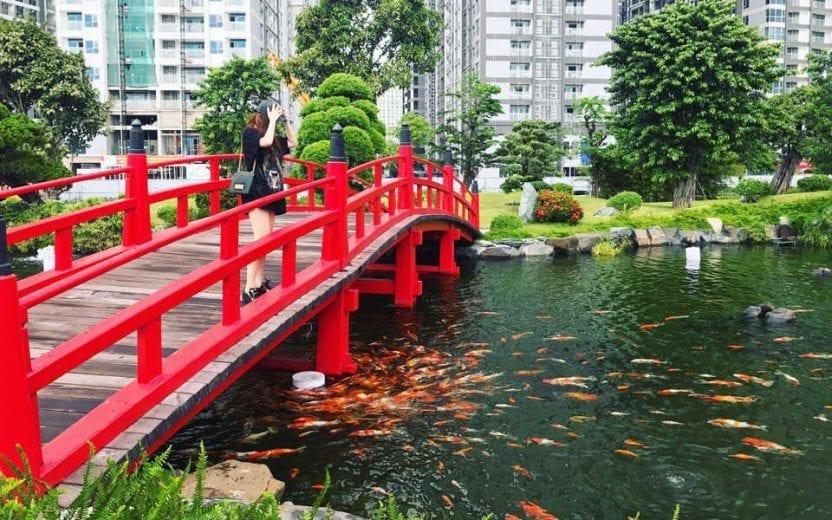 Hồ cá Koi công viên Vinhomes